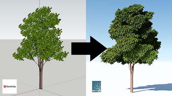 cadacademy_lumion7_alberi