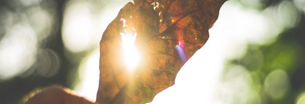 abstract-art-artistic-blur-290617