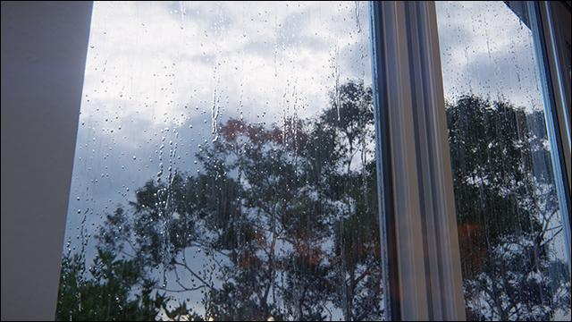 RainStreaks_3